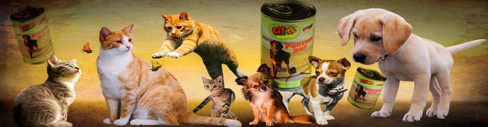 Marke Cit Tiernahrung